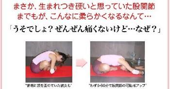 八田永子の「即効!柔軟アップのためのストレッチ」 口コミと効果.jpg